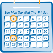 Metastatic Breast Cancer Treatment Calendar