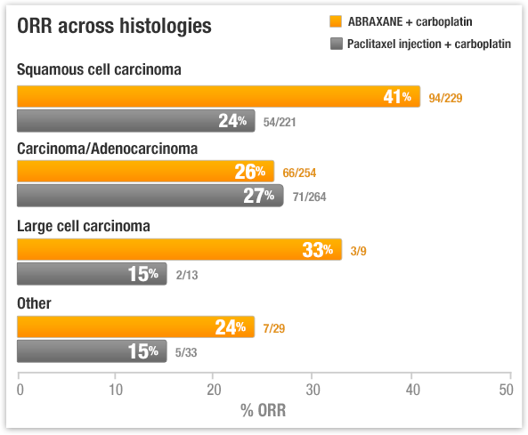 ABRAXANE overall response rate in non-small cell lung cancer histologies subgroups
